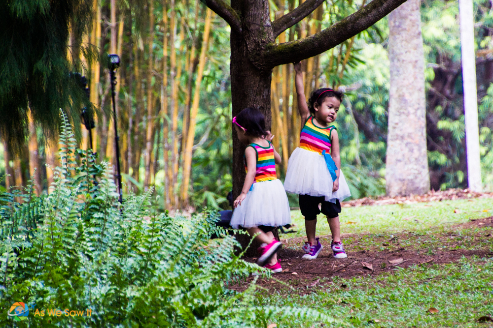Kids having fun near the Children's Garden at the Bukit Timah Core.