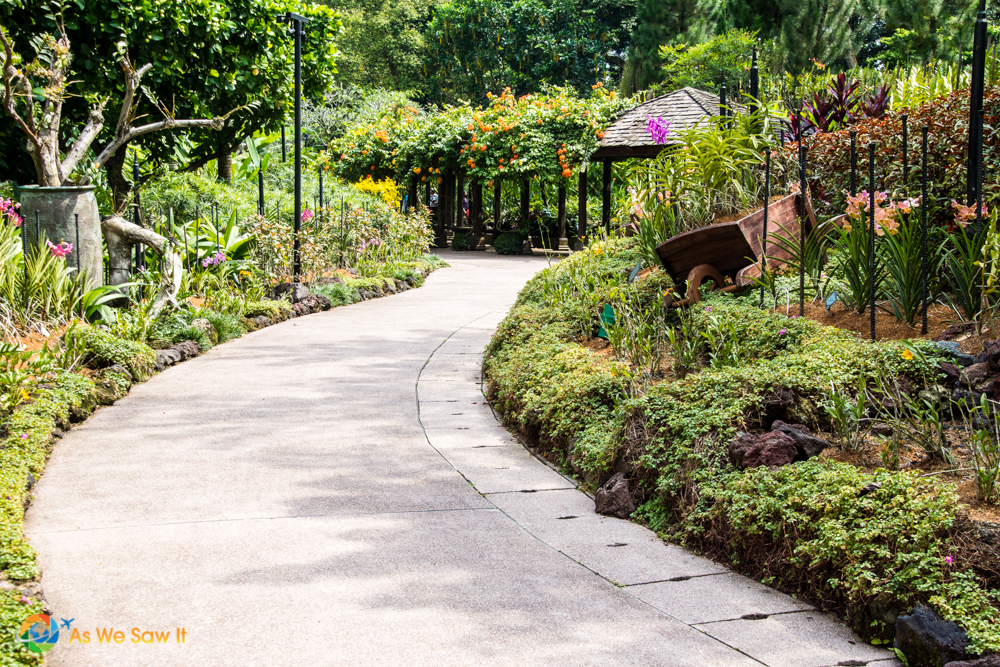 Meandering Paths Lead Into The Singapore Botanic Gardens