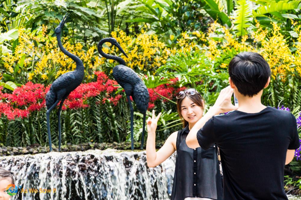 Man photographing his wife in Singapore Botanic Gardens