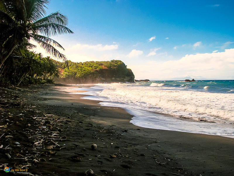 black sand Hampstead beach, fringed by rainforest and coconut palms