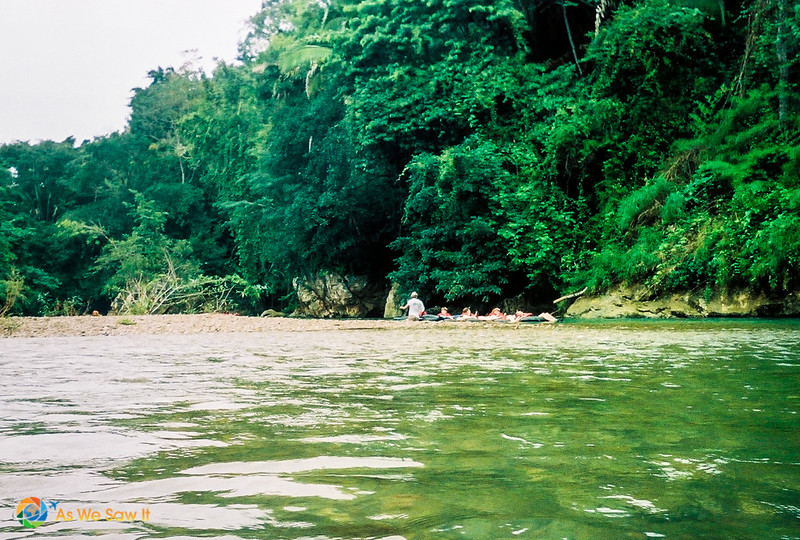 Jungle on the far shore on a river in Belize