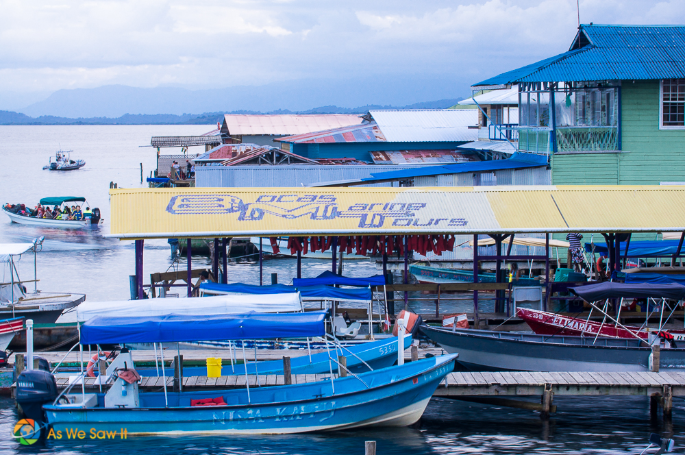 Catch a boat tour from the marina.