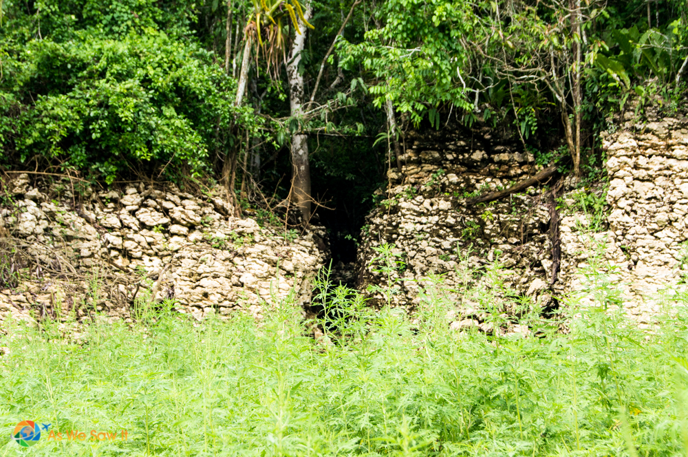 The Panamanian rainforest reclaims an Ancient Spanish wall