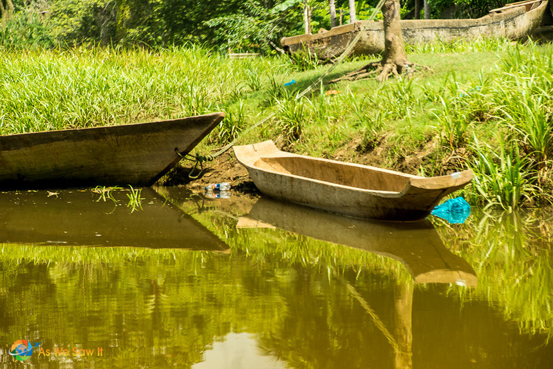 Dugout canoe in the Darien