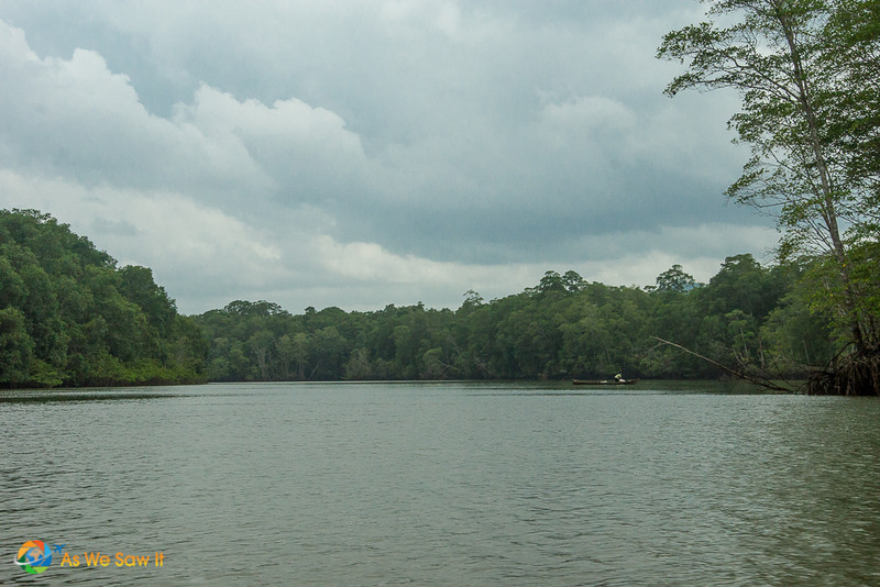 River in Panama's Darien Gap