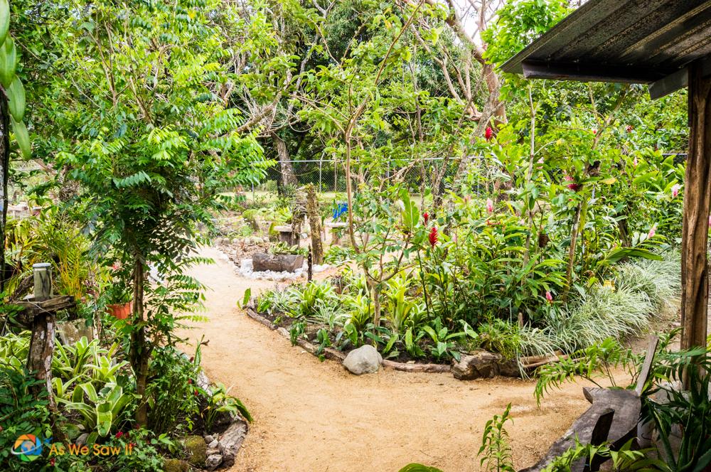 Orchid garden in El Valle de Anton.