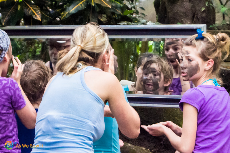 People look into a mirror to rub volcanic mud on their faces.