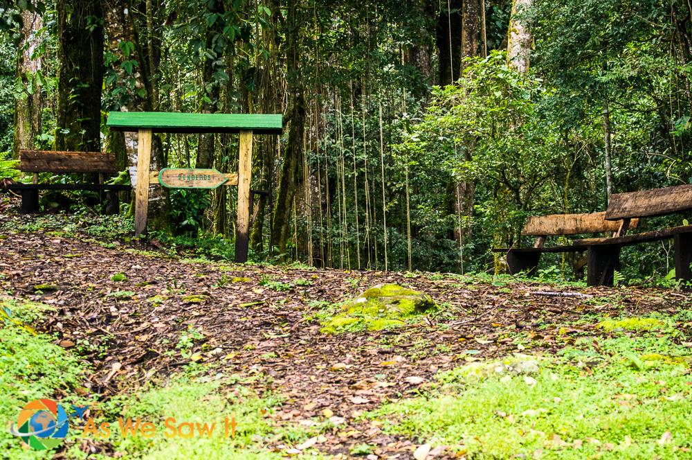 Entrance to birding trail at Finca Lerida.