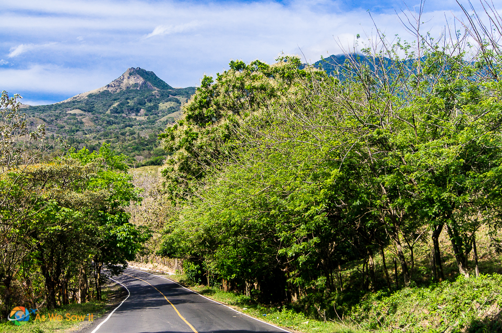 Road leading into the central mountains of Panama.