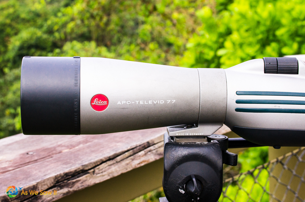 Leica APO-TELEVID 77 spotting telescope used by our guide.