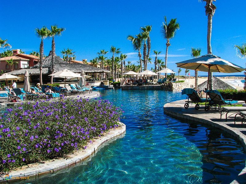 Flowers, lounge chairs and tables line the deep turquoise pool La Hacienda, a couples resort we stayed at in Cabo San Lucas, Mexico