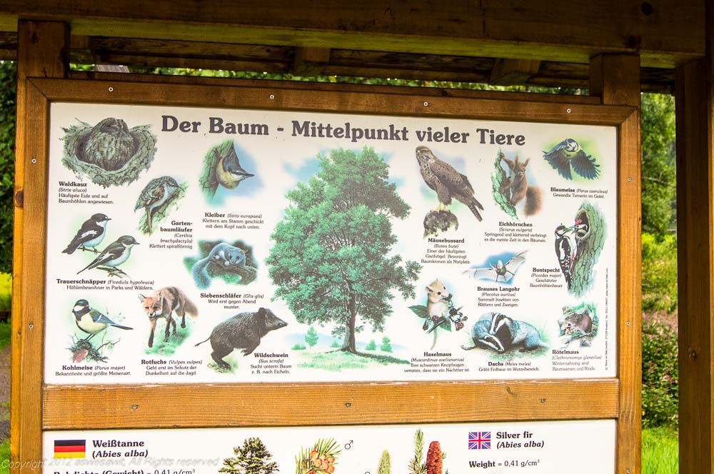 Sign on a hiking trail in the Black Forest.