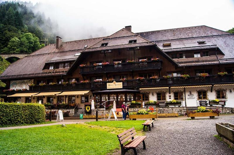 black forest visitor center