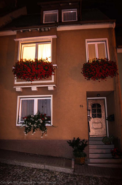 Breisach house with flower-filled window boxes.