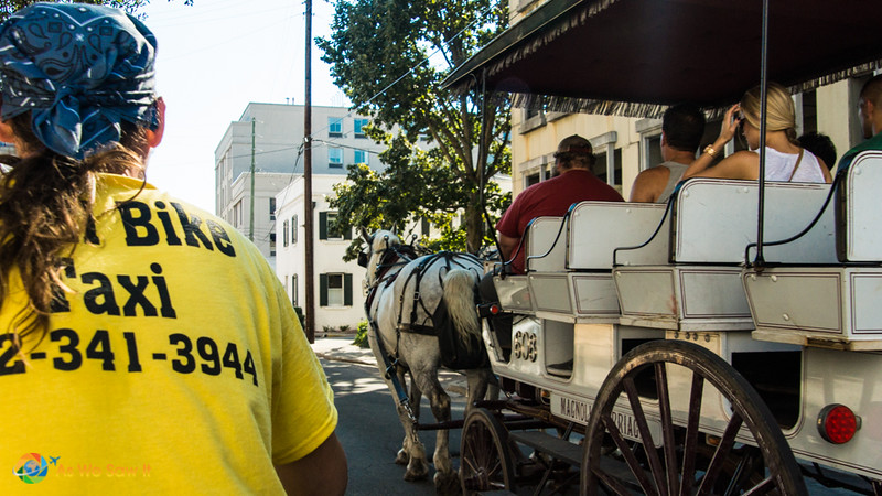 back of Savannah cycle tour guide's shirt on left. Horse and carriage on right. Both are used to get around Savannah, Georgia