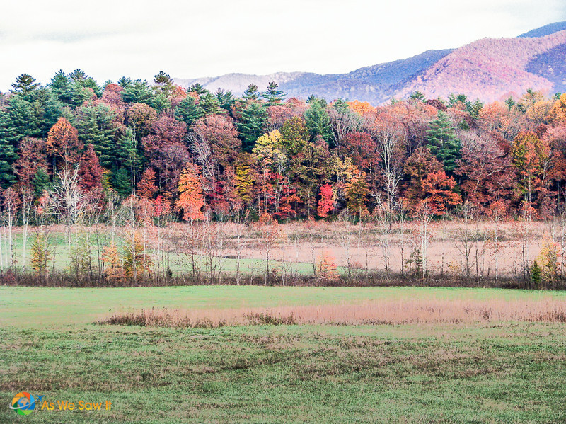 Autumn in Cades Cove, Tennessee