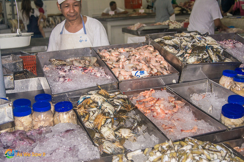 Vendor stands behind bins of eafood at a stall at Panama City fish market